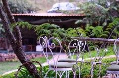 cafe_jardin_santa_lucia_Honduras_6