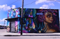 wynwood_walls_miami_17